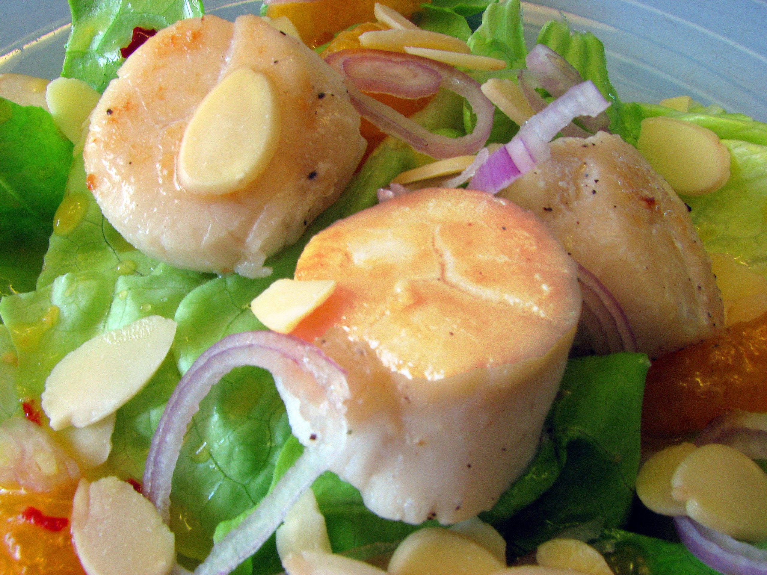 Avocado Shrimp (or Scallop!) Summer Salad