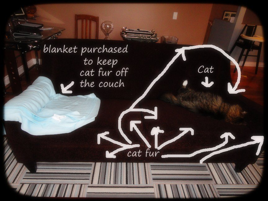 Cat Fur Furniture
