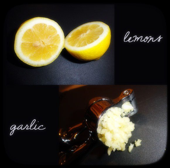 lemon-and-garlic-Lo-Fi