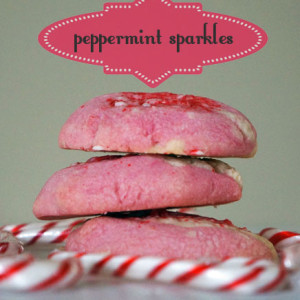 peppermint sparkle christmas shortbread cookie banner