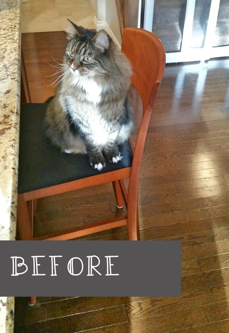 Raising the Bar Stool. A Makeover Story.