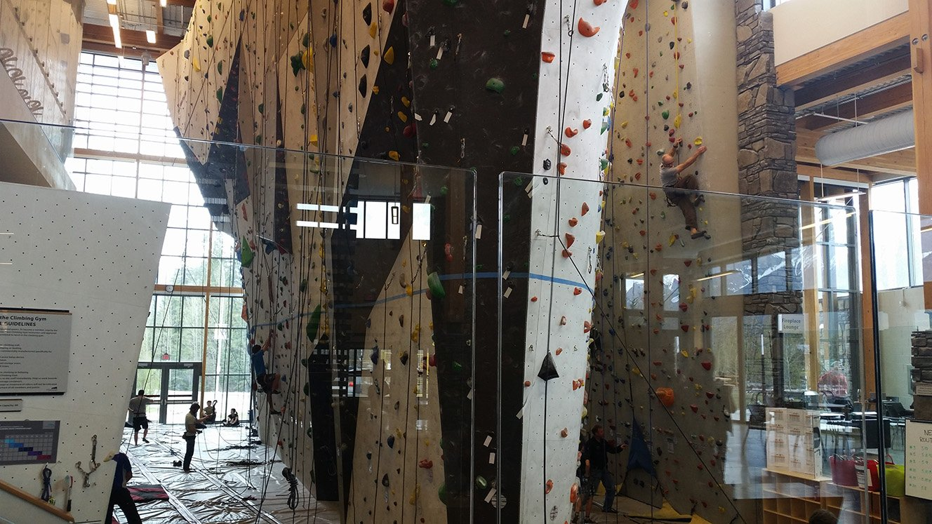 elevation place rock climbing wall