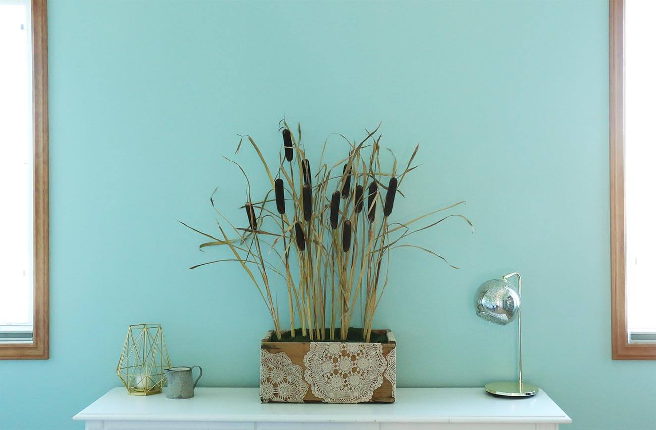 cattail-arrangement