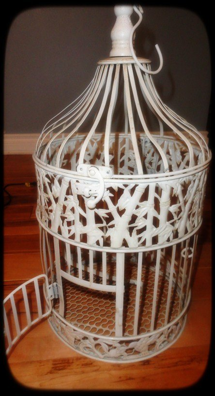 How To Make Your Very Own Birdie Lamp