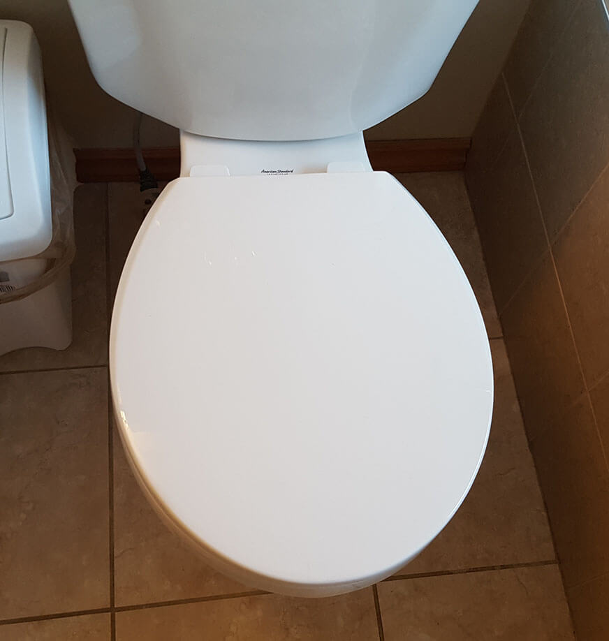toilet new seat installed